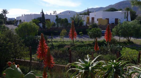 Hotel Pictures: La Posidonia, Rodalquilar