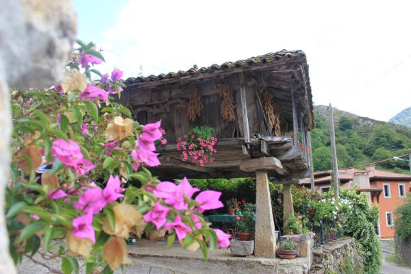 Hotel Pictures: , Llerices