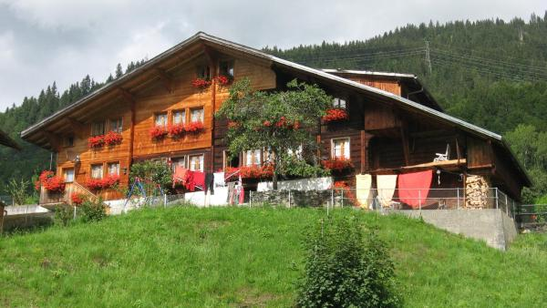 Hotel Pictures: Pension Alpenblick, Hasliberg