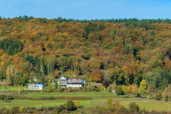 Hotel Pictures: Waldhotel Sonnenberg, Bollendorf