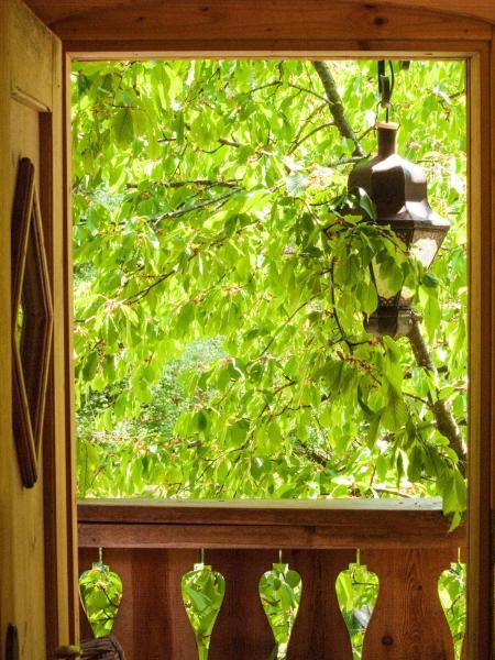 Tree House - La Bohème