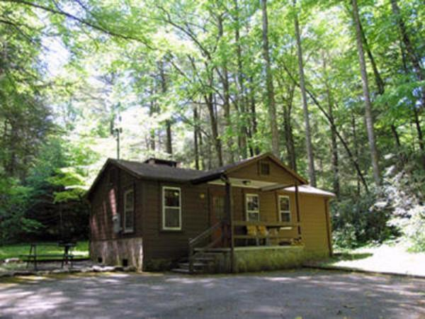Two-Bedroom Cabin - 10