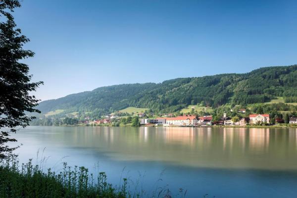酒店图片: Wesenufer Hotel & Seminarkultur an der Donau, 魏森乌弗