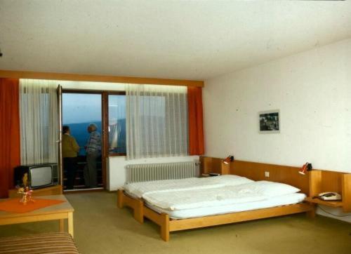 Hotel Pictures: Ferienhotel Hochstein, Haidmühle