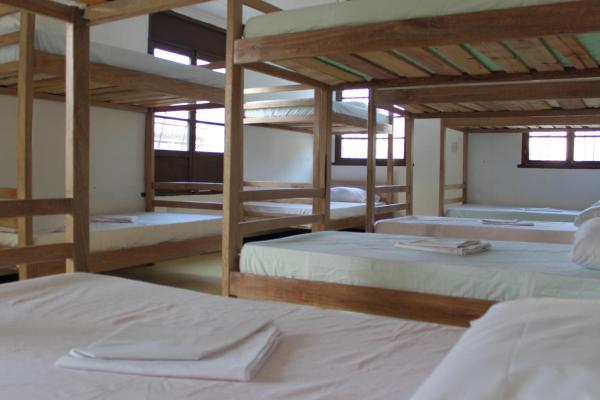14-Bed Mixed Dormitory Room