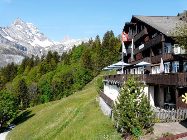 Hotel Pictures: Alexander's Tödiblick, Braunwald