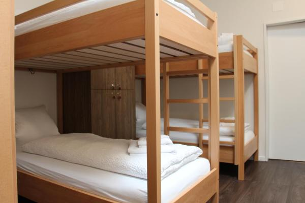 Bed in 6-Bed Mixed Dormitory Room - No Window
