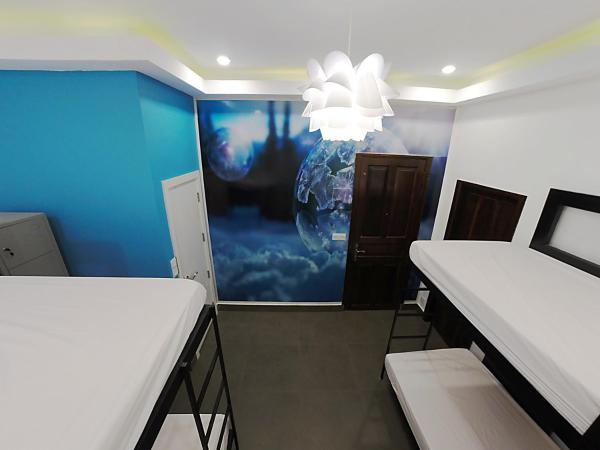 Single Bed in 4-Bed Mixed Dormitory Room (Bubble Room)