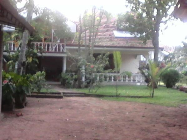 ホテル写真: Villa Pala, ネゴンボ