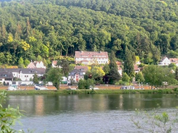 Hotel Pictures: Waldherberge Moselblick, Brodenbach