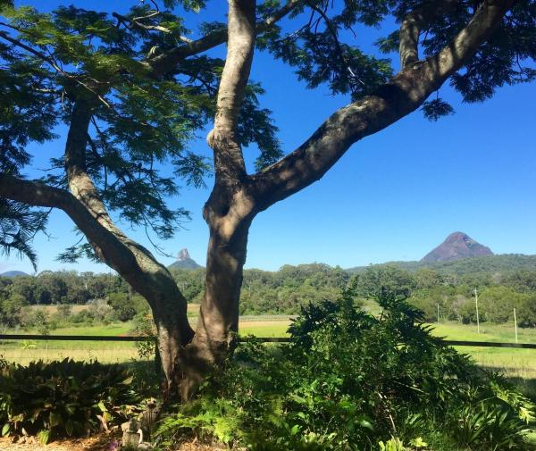 Hotelbilleder: Blackwattle Farm, Beerwah