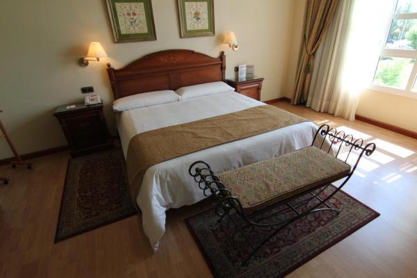 Hotel Pictures: Hotel Lasa Sport, Valladolid
