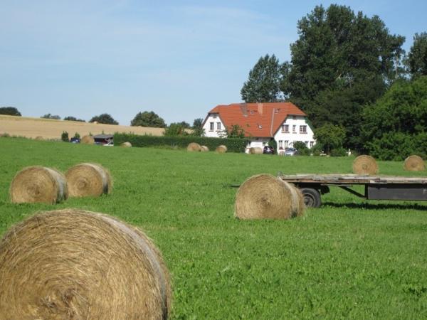 Hotel Pictures: Landhaus Alt Reddevitz, Middelhagen