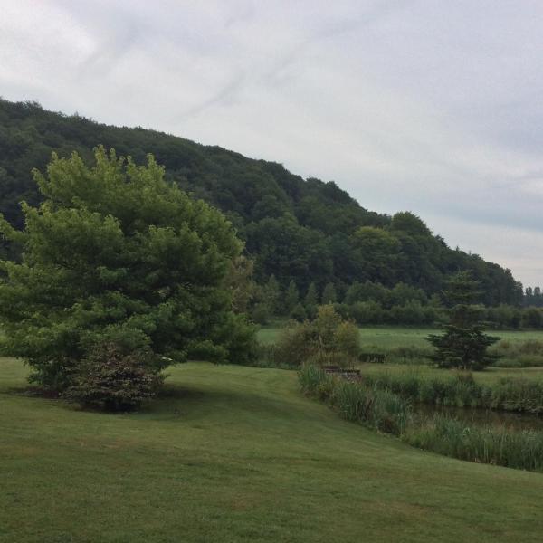 Hotel Pictures: Gîte La Manègerie, Grainville-la-Teinturière