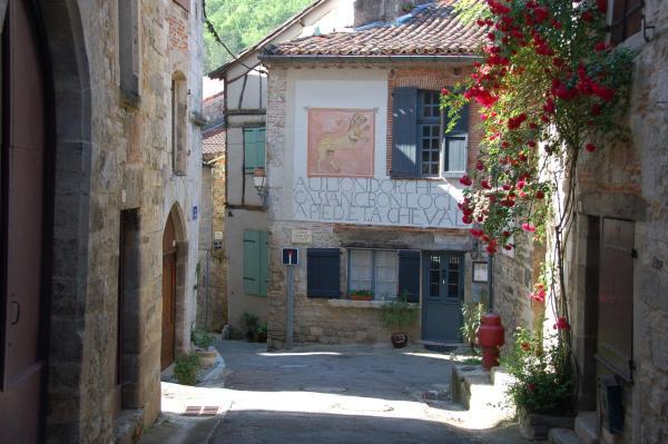 Hotel Pictures: Auberge Lion d'Or, Saint-Antonin