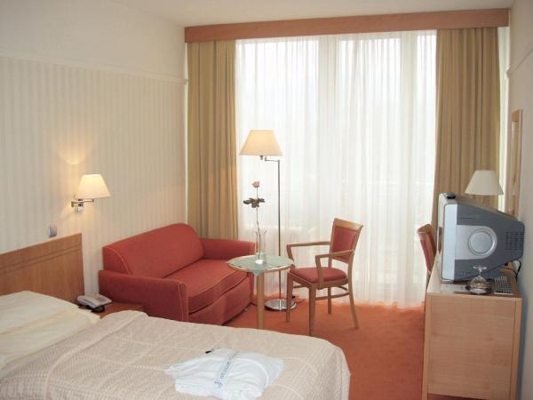 Standard Single Room /Palace wing/