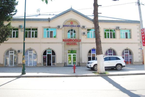 Zdjęcia hotelu: Nesiboglu Hotel, Ağstafa