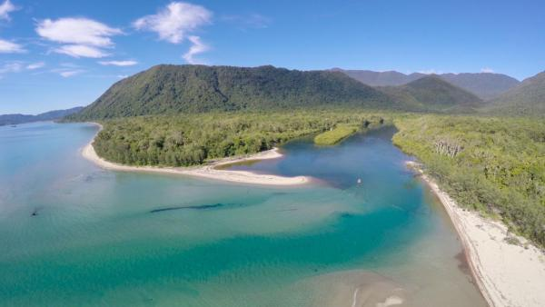 Φωτογραφίες: Noah Creek Forest Stay Eco - Huts, Cape Tribulation
