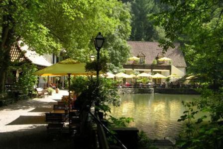 Hotelbilleder: Waldhotel Silbermühle, Horn-Bad Meinberg