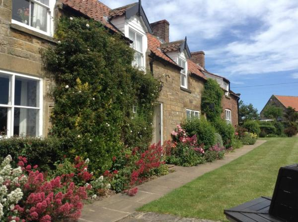 Hotel Pictures: Swallow Cottages, Whitby