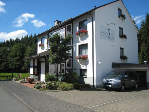Hotel Pictures: Landhaus Wittgenstein, Bad Berleburg