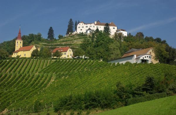 酒店图片: Schloss Kapfenstein, 卡芬斯蒂恩