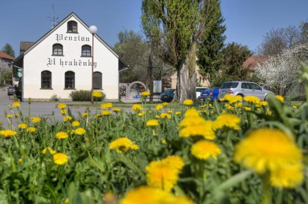 Hotel Pictures: , Petrovice