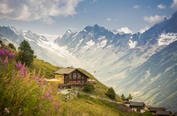 Hotel Pictures: Alpenhotel zur Wildi, Wiler