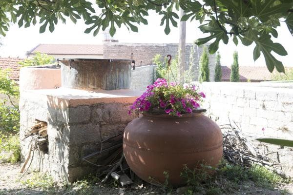 Hotel Pictures: , Pachna