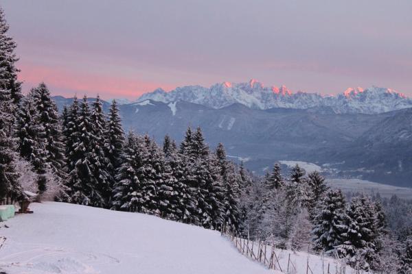 Hotel Pictures: Naturgut Gailtal, Sankt Stefan an der Gail