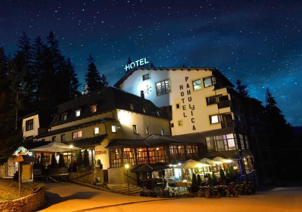 ホテル写真: Hotel Pahuljica, Vlasic