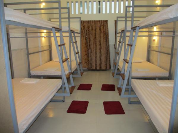 Bunk Bed in Mixed Dormitory Room - Premium Room