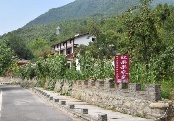 Hotel Pictures: Hongguoguo Farm Stay, Qingchuan