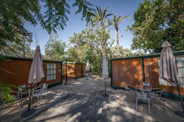 Hotel Pictures: Camping Las Palmeras, Crevillente