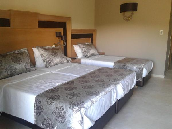 Triple Room with Meteora View