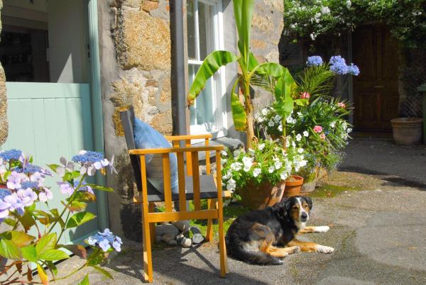 Hotel Pictures: Orchard Cottage, Penzance