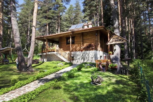 Hotellbilder: Villa Borovinka, Tsigov Chark