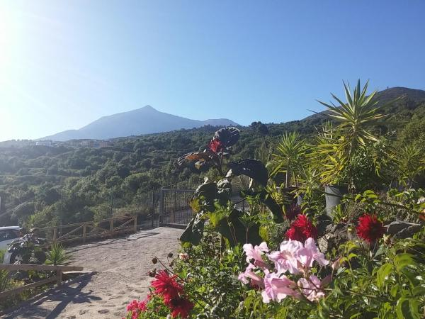 Hotel Pictures: Ecolodge Tenerife, Genovés