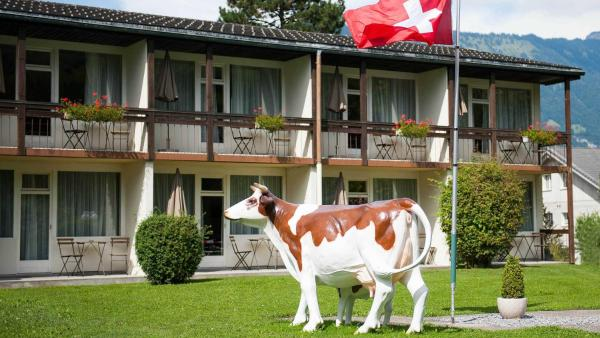 Hotel Pictures: Alpine-Inn by Jungfrau Hotel, Wilderswil