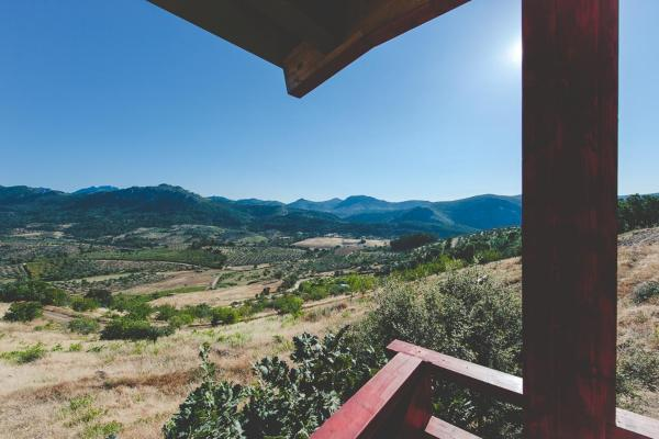 Hotel Pictures: La Brizna, Cañamero