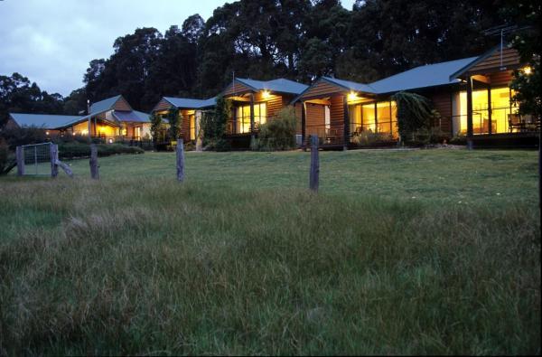 Фотографии отеля: Peppermint Lane Lodge, Wellington Mills