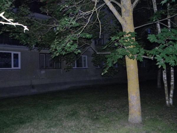 Hotel Pictures: , Kiviõli