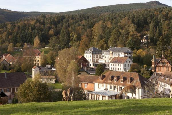 Hotel Pictures: Le Relais de la Poste, Le Hohwald
