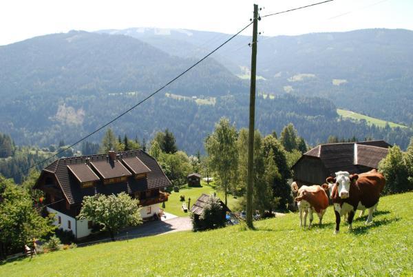 Hotelbilleder: Ferienwohnung Lahnerhof, Arriach