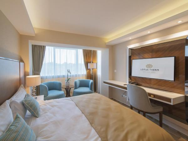 Single Room with Wellness Package