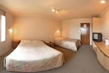 Budget Double Room with Single Bed