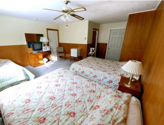 Two Queen Beds and One Twin Bed