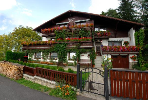 Hotel Pictures: Pension Vinkl, Harrachov