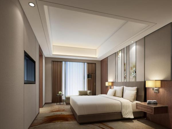 Deluxe Suite with City View
