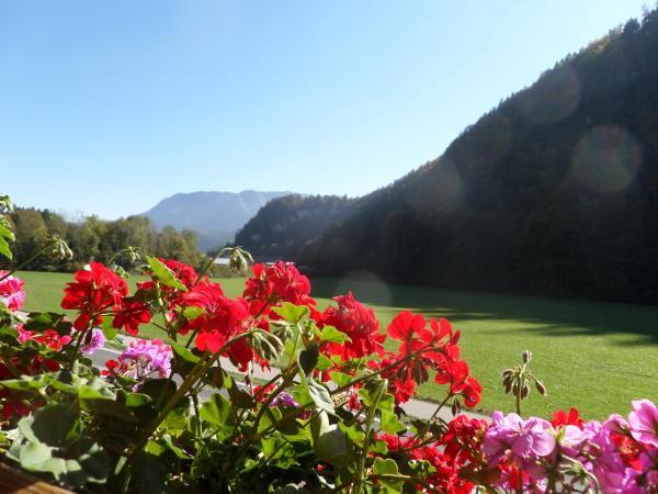Hotellikuvia: Haus Appesbacher, St. Wolfgang